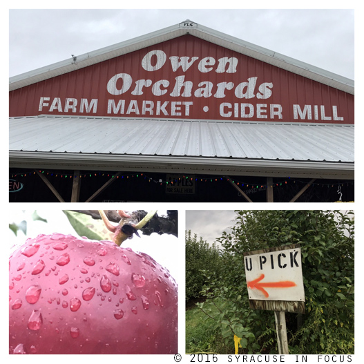 We were told by the growers that Owen Orchards (Weedsport) lost 70 percent of their crop because of a spring frost this year.